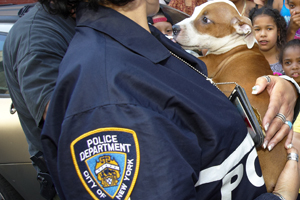 NYPD officer holding pit bull puppy