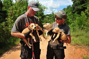 Cute puppies being held - Photo: Mike Bizelli/ASPCA