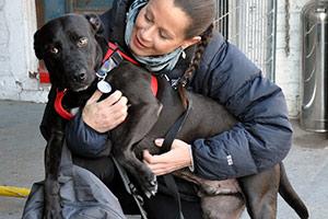 ASPCA Responder holding dog