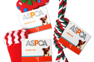 Target ASPCA Pet Toys