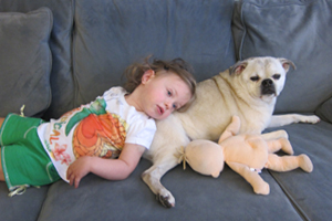 Teaching Your Children to Safely Approach and Interact with Dogs
