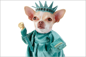 The 10 Most Groundbreaking U.S. Animal Welfare Laws