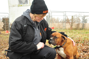 ASPCA FIR responder tends to dog