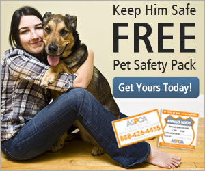 Get Your Free Pet Safety Pack
