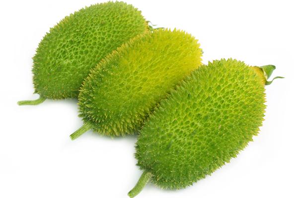 Hedgehog Gourd