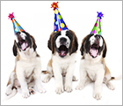 Donate Your Birthday - About Us Ad