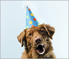 Donate Your Birthday - Adopt Ad