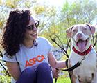 Join Team ASPCA - Homepage Ad