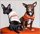 Join Team ASPCA - Pet Care Ad
