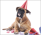 Donate Your Birthday - Pet Care Ad