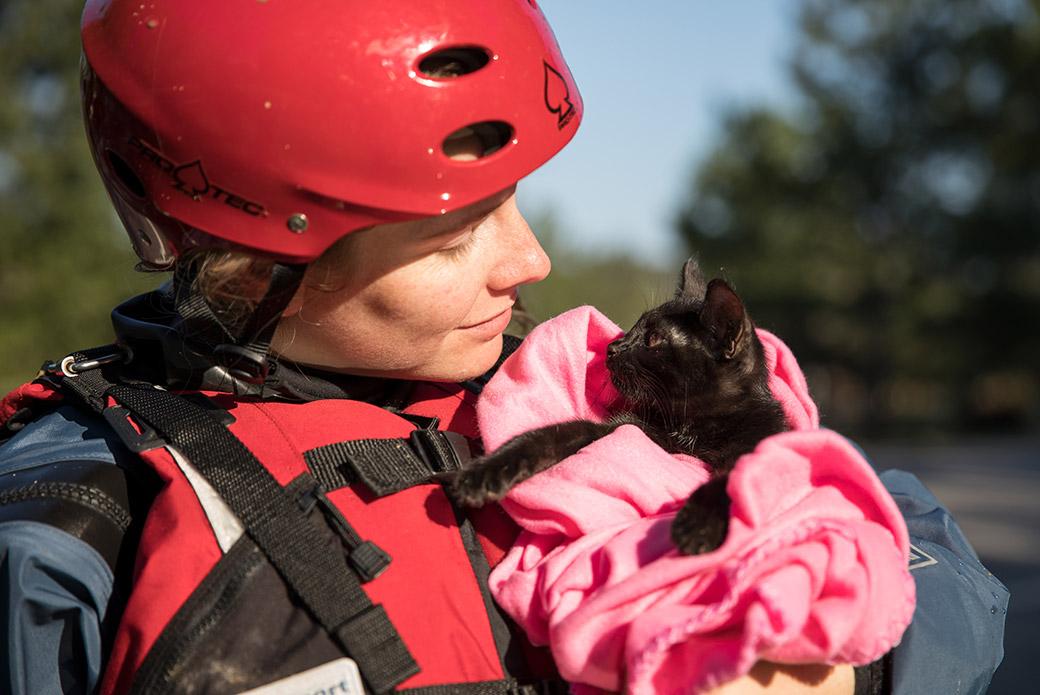 a responder comforting a kitten