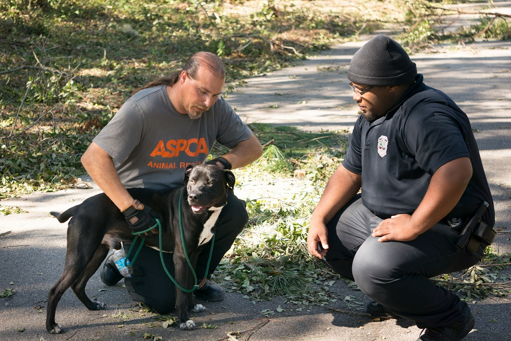 two ASPCA volunteers with a rescued dog