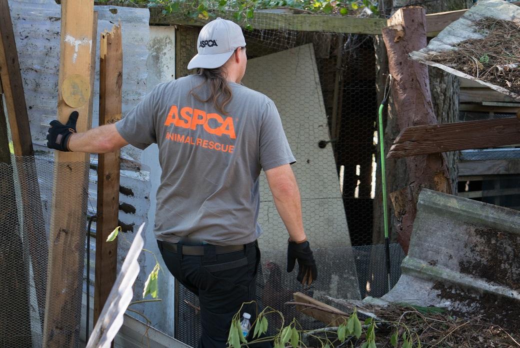 ASPCA volunteer entering a destroyed home