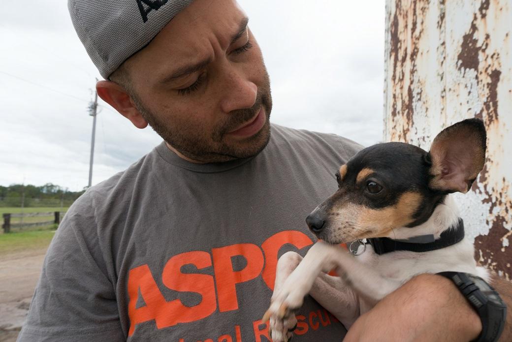 Small dog being held by ASPCA volunteer