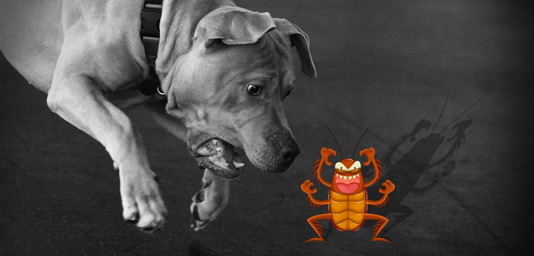 a dog barking at a cartoon flea