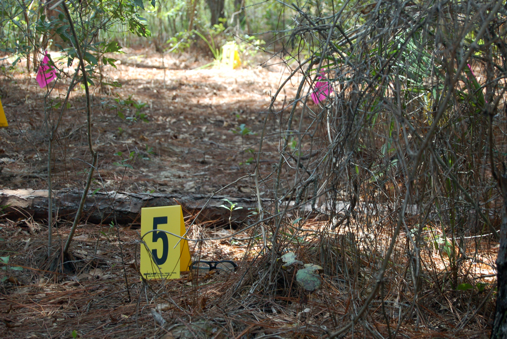 evidence markers