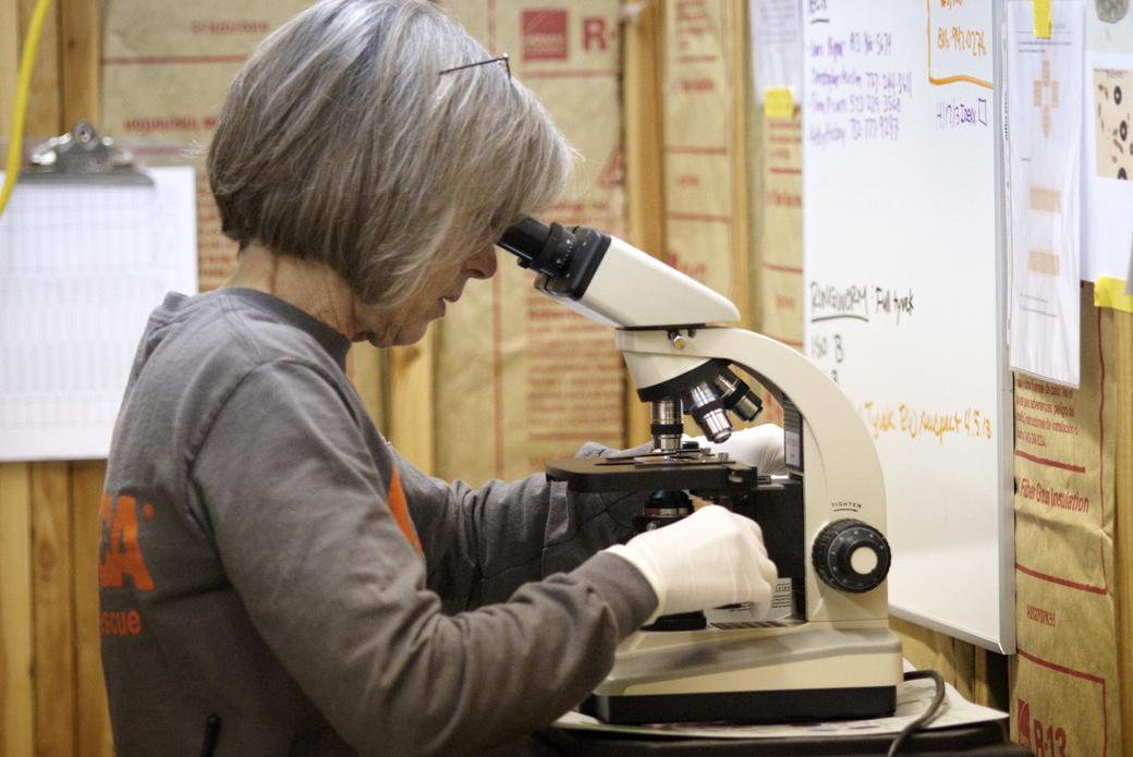 examining evidence under a microscope