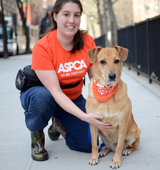 ASPCA staffer sitting next to dog wearing ASPCA bandana