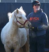 FIR responder stands next to white horse