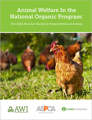 Animal Welfare In the  National Organic Program