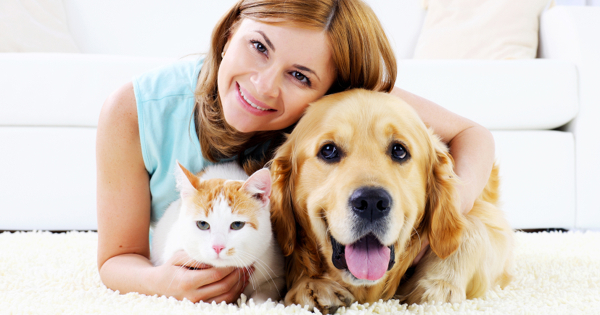Image result for Pet Care