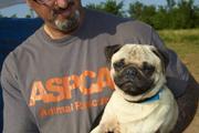 ASPCA responder holding pug