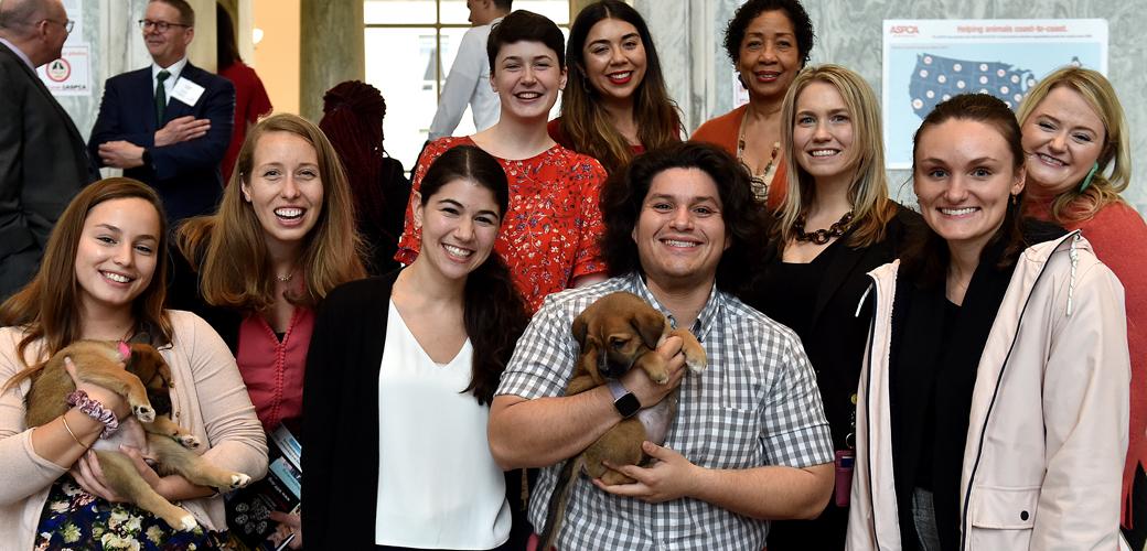 ASPCA Government Relations Internship Program