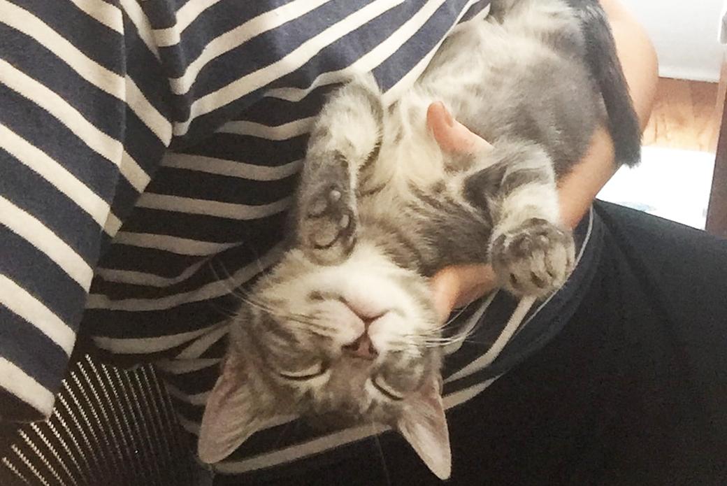 Fievel in Gabrielle's arms
