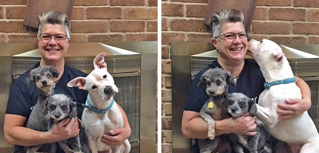Tammy and three rescued dogs