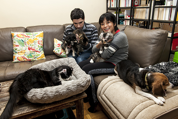 Young couple sitting on couch with cats and dog