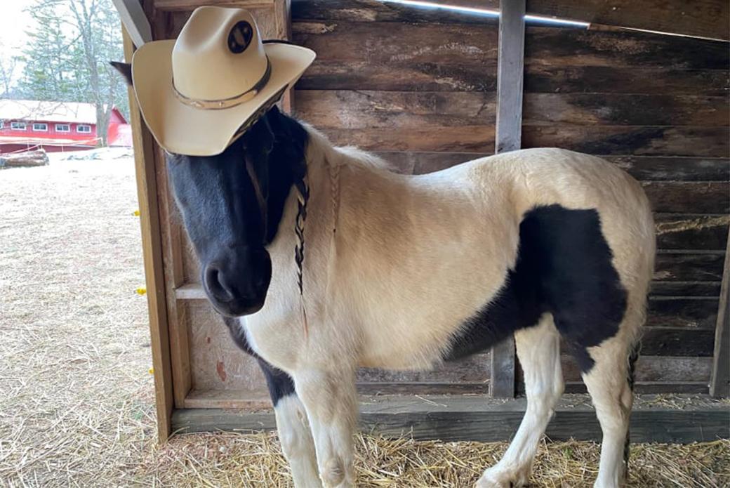 Diva in a hat