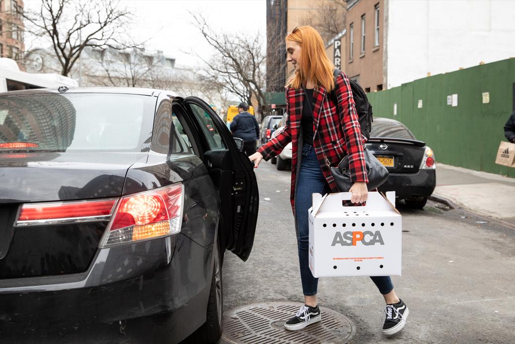 Amanda leaving with Merry