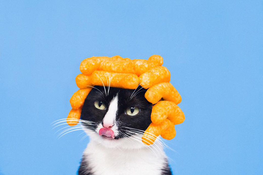 Cheeto with cheetos on her head