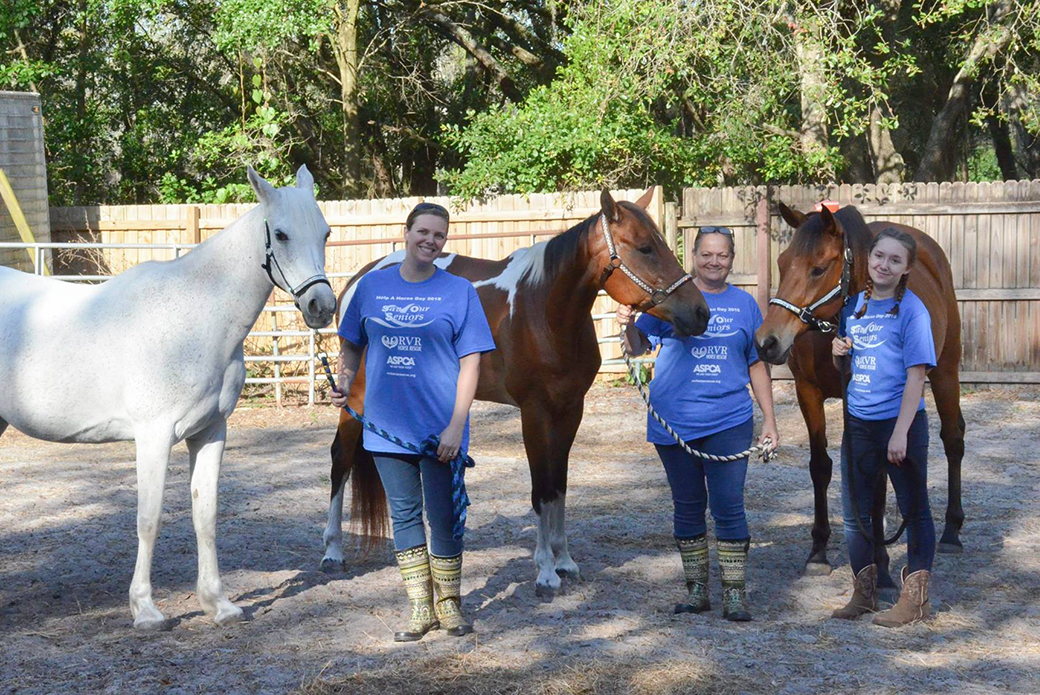 A trio of horses and their adopters: Left to right: Bug, Kasee, Rayna, Debbie, Kahlia, Alex