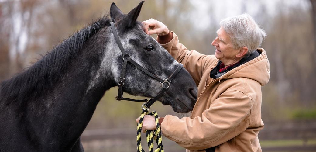 Man petting horse