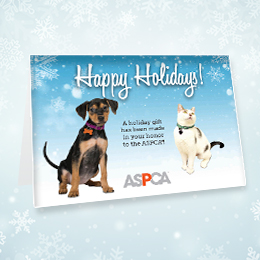 Ways to Give | Donate | Charitable Contributions | ASPCA