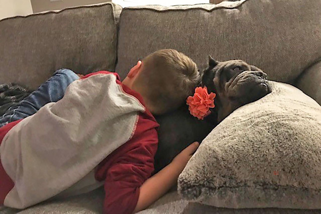 Blue napping with Cara's son
