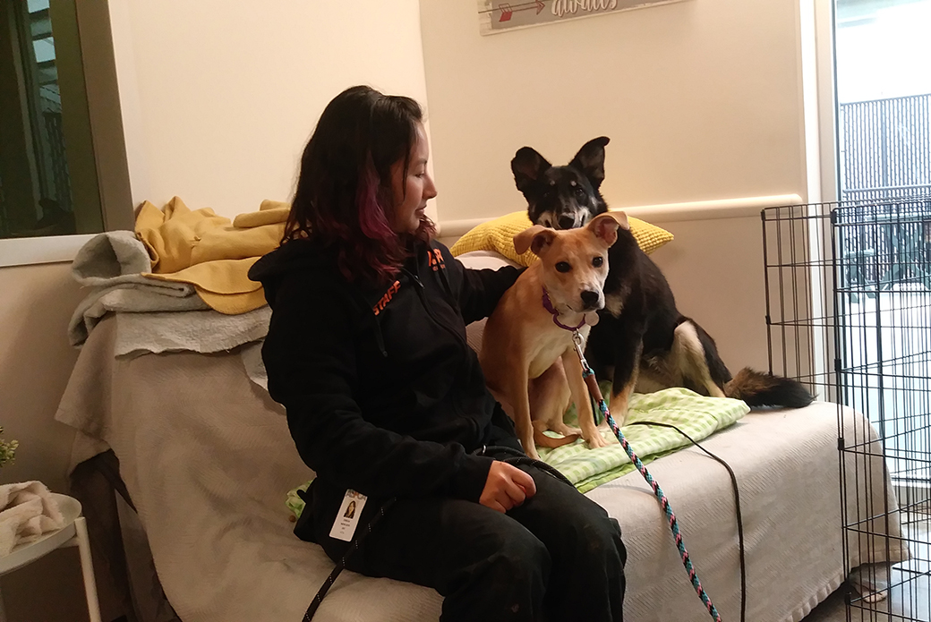 Cindy with her dog friend and human friend