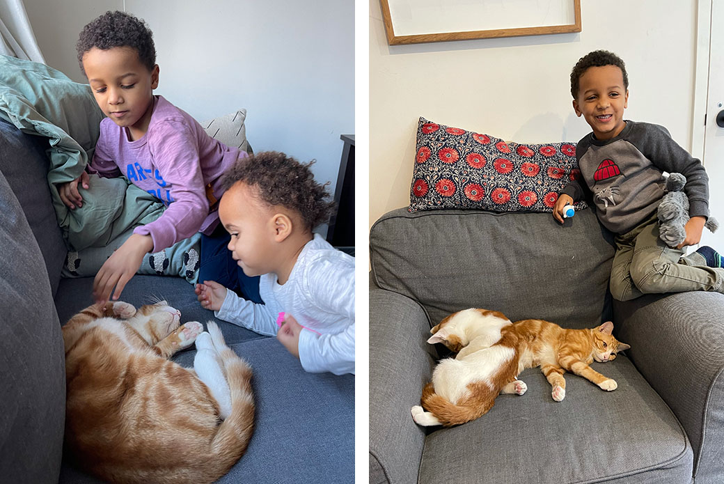Caiden and Frankie with the cats