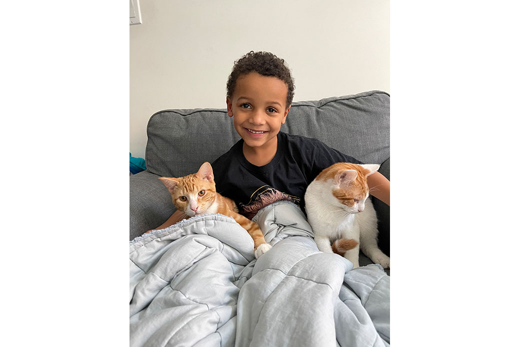 Caiden and his cats
