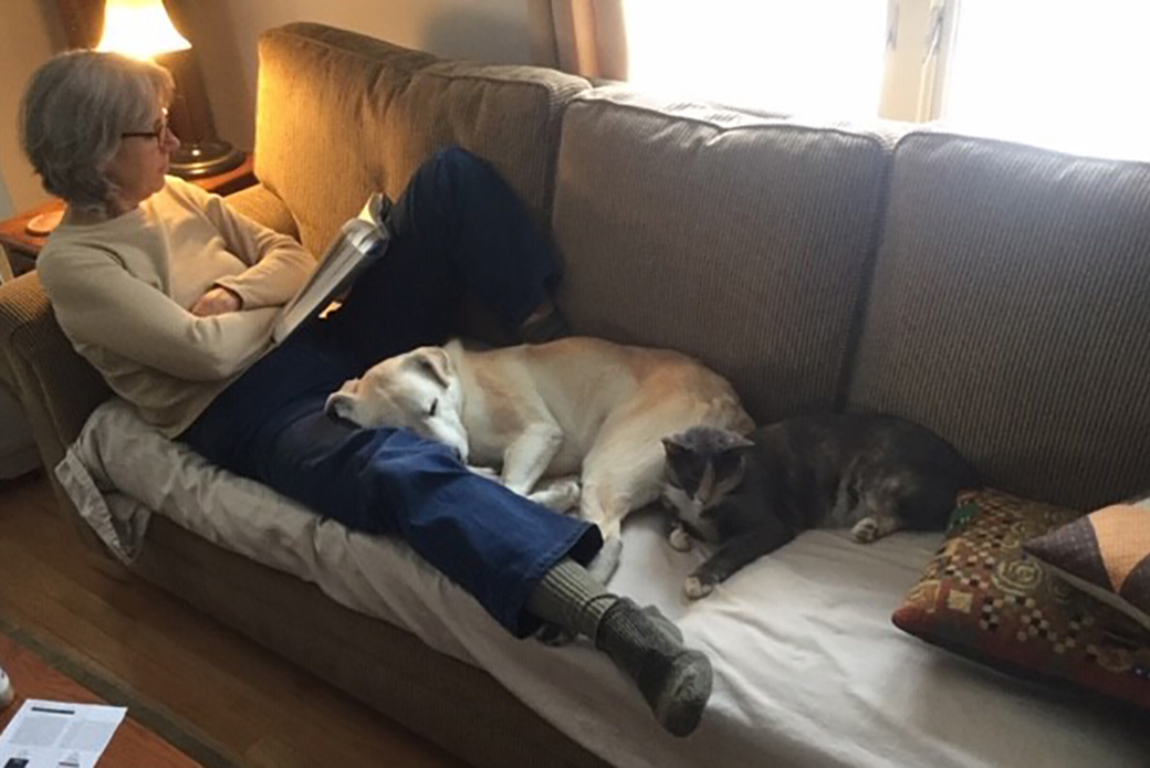 Sully and Peggy rest on a couch