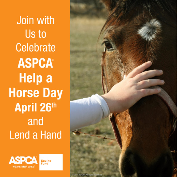 Join Equine Rescues Nationwide April 26 to Celebrate ASPCA Help a Horse Day