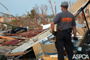 ASPCA FIR responder looking at damage from tornado