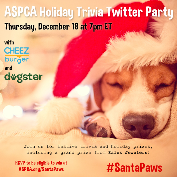 Join Our #SantaPaws Holiday Trivia Twitter Party and Giveaway on December 18!