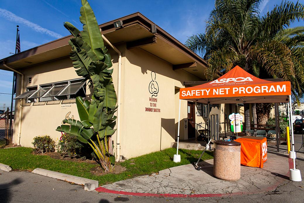 LA Safety Net