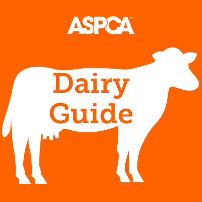 Dairy Guide