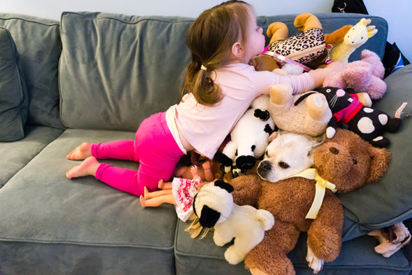 Little girl playing next to dog poking his head out of a stuffed animal pile