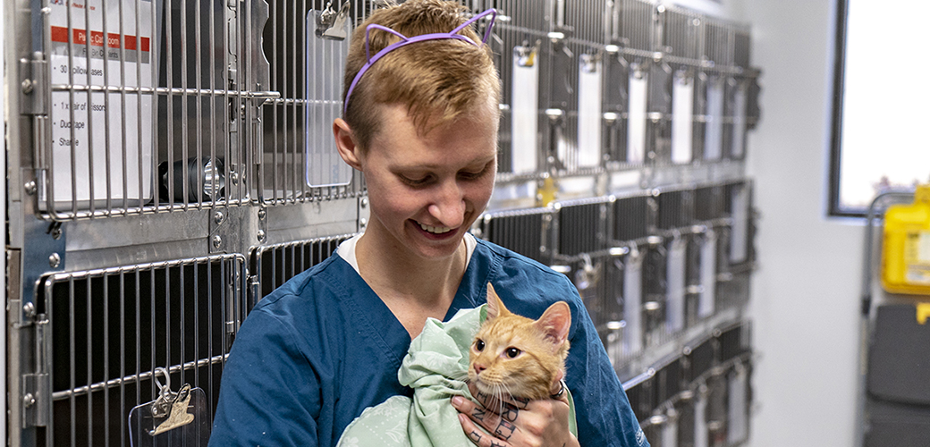 A cat being held by ASNA staff