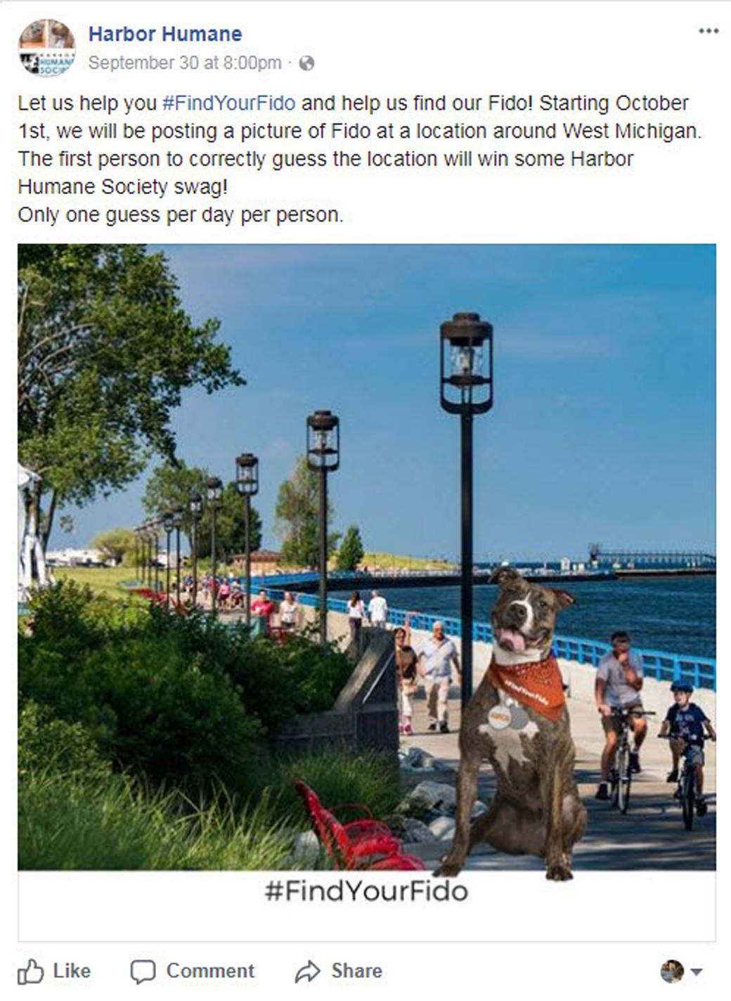 Harbor Humane #FindYourFido facebook post