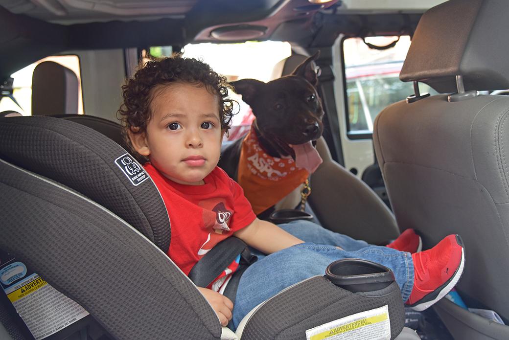 Koko and Antonio's child
